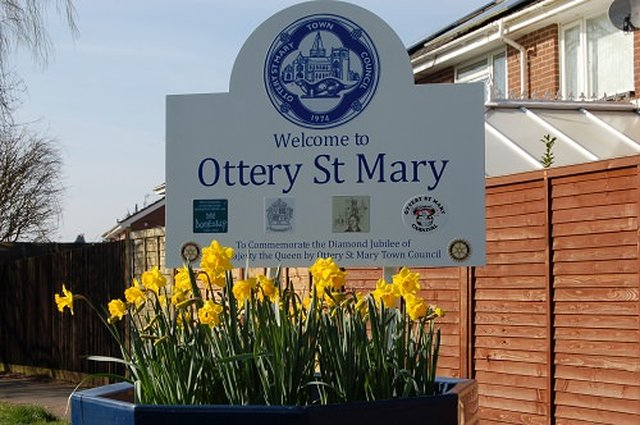 Ottery in full bloom image