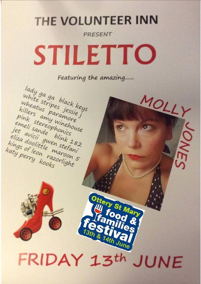 STILETTO - Ottery St Mary - food & families festival (Fri 13th June) image