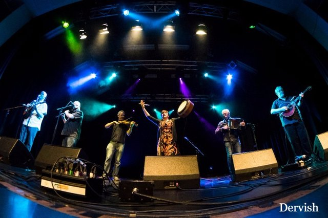 The Best in Irish Music, Dance & Song at Sidmouth FolkWeek image