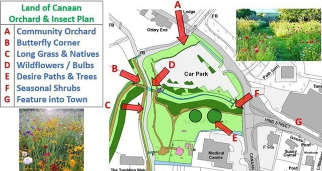 Community Orchard for Ottery St Mary image